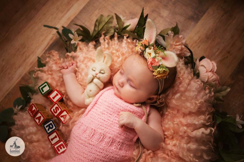 Baby Photo Shoot