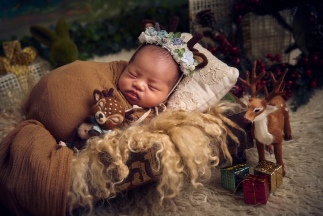 Christmas Newborn Mini Shoot
