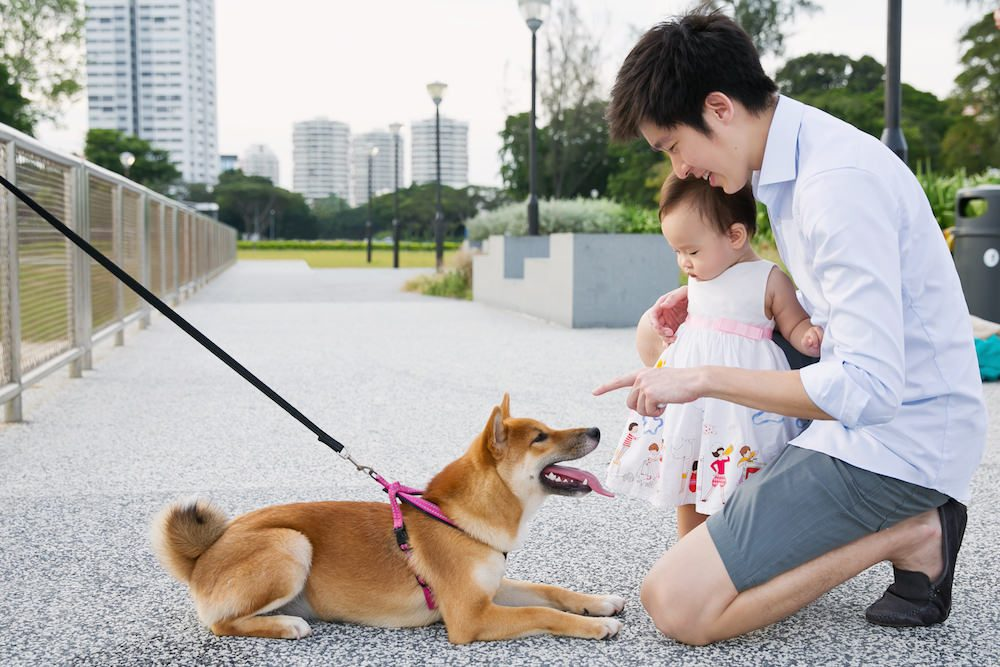 Outdoor Family Photoshoot Pet